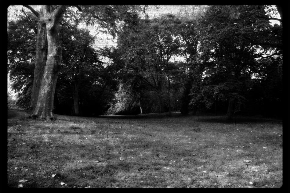 Hofgarten © Verena Fischer 2012